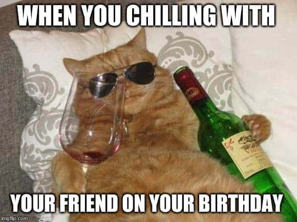 cat chillin birthday meme