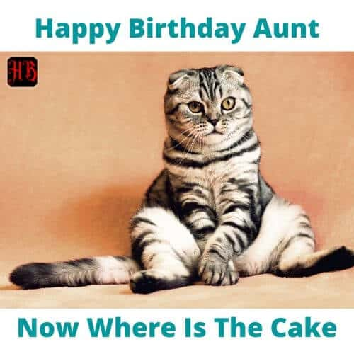 Happy Birthday Auntie Meme