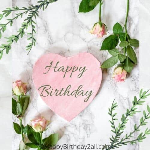 Happy Birthday wish with pink roses and leaves