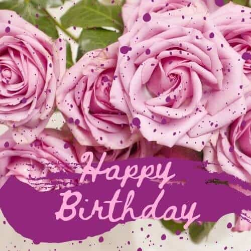 Happy Birthday with bright pink roses